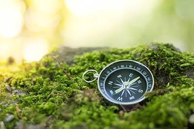 Kompass liegt im Moos
