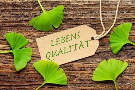 Ginko Blätter & Lebensqualität Schlidchen